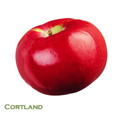 cortland minnesotaapple.orgcred