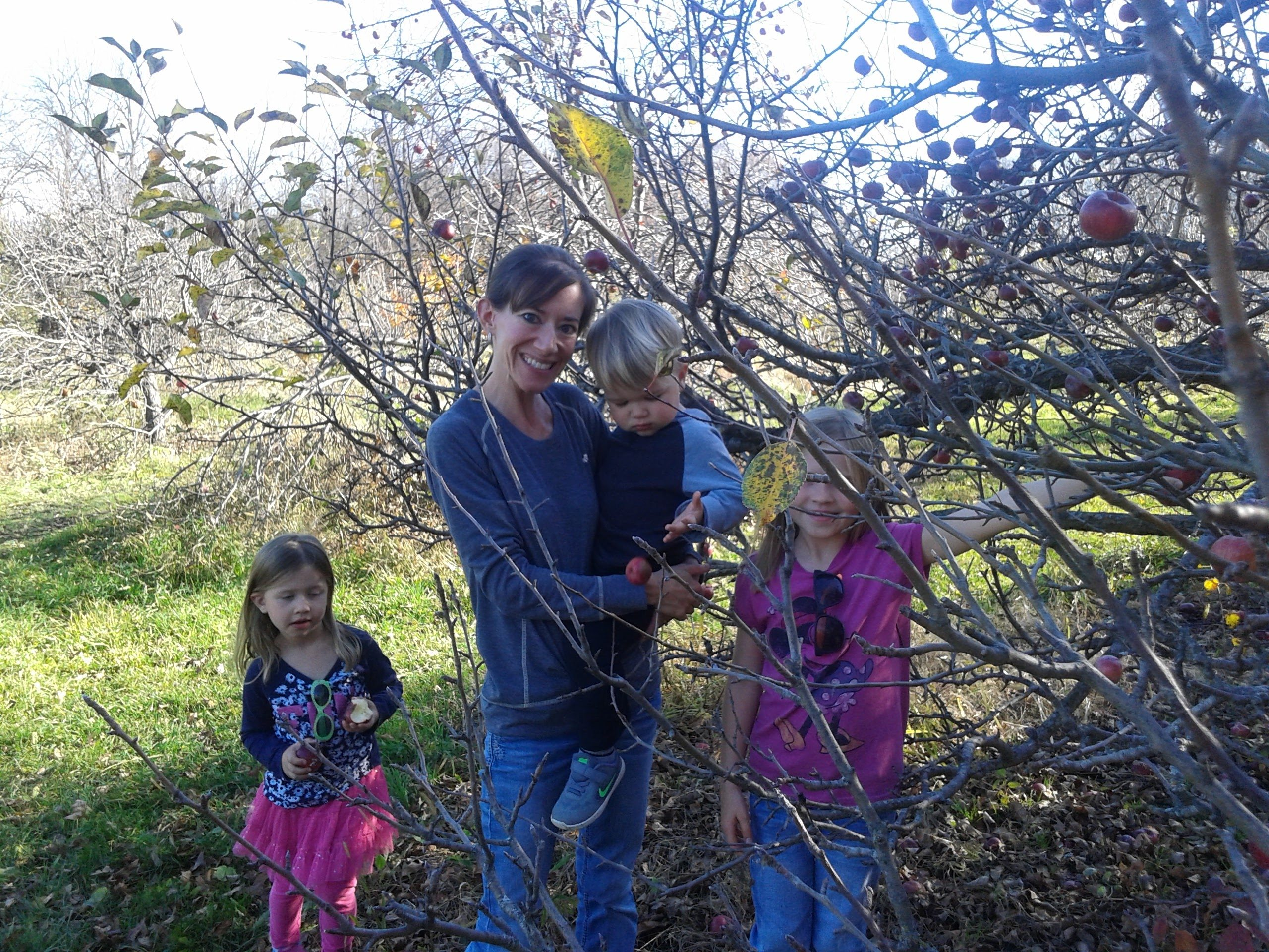 Family fun picking apples